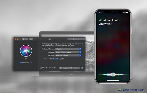 what-to-do-if-siri-or-hey-siri-is-not-working-on-your-mac-or-ios-device-wise-tech-labs
