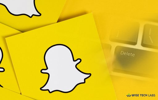 how-to-delete-your-snapchat-account-using-your-smartphone-or-computer-wise-tech-labs