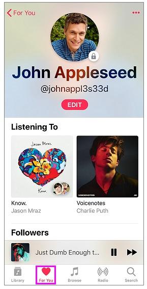 apple-music-ios-wise-tech-labs