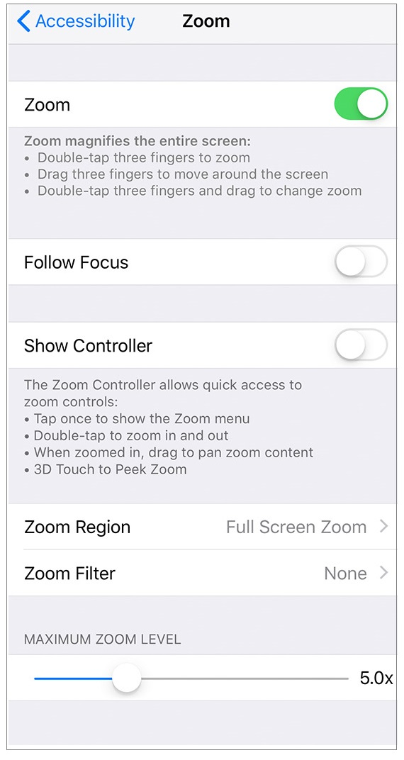enable-disable-zoom-ios-wise-tech-labs